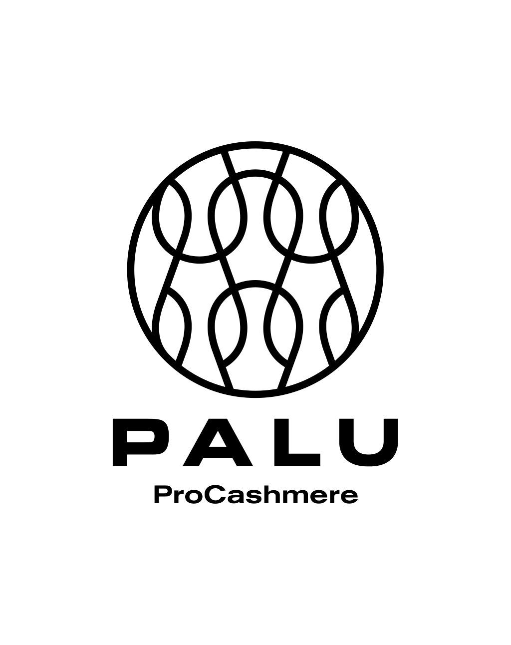 PALU Ltd