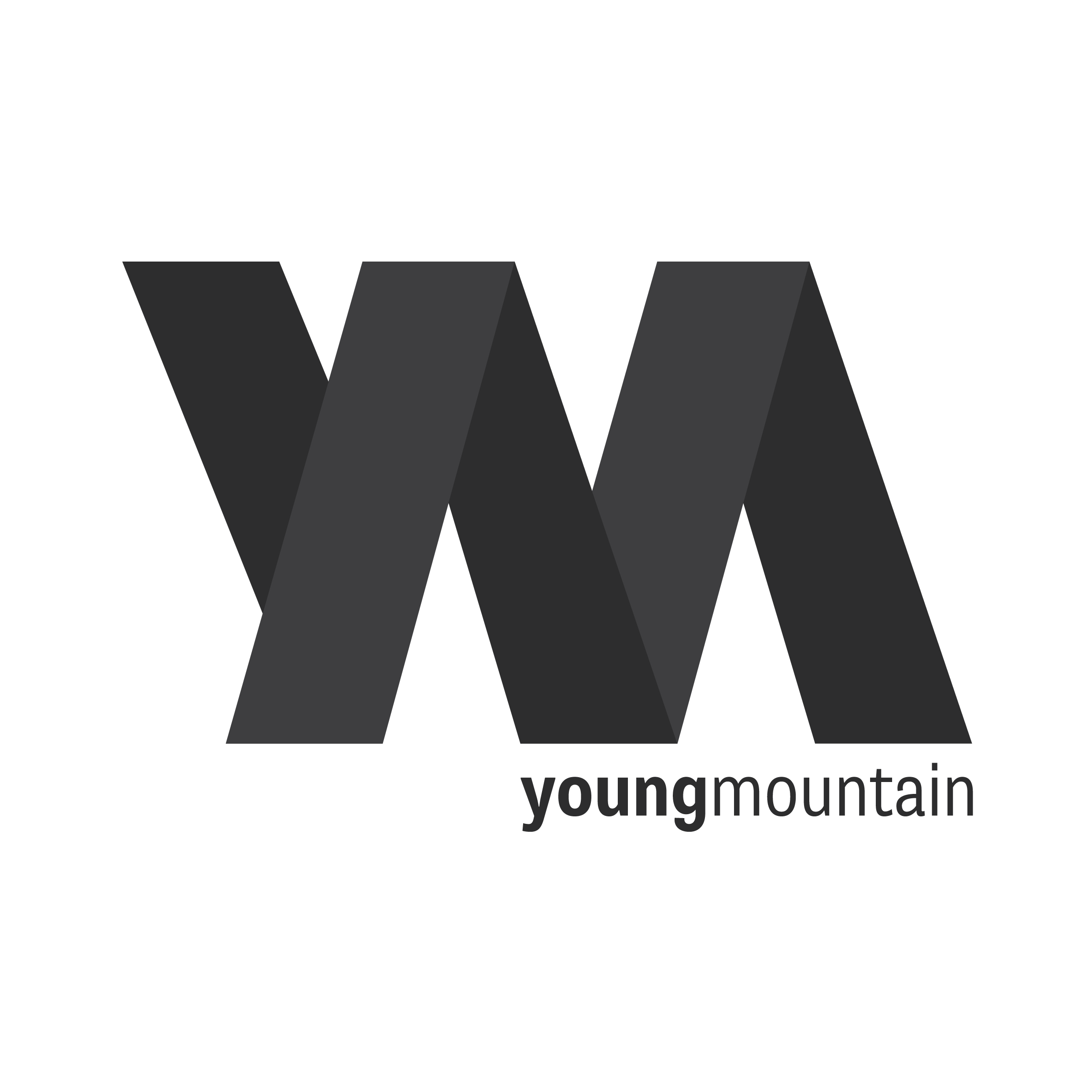 Young Mountain Marketing